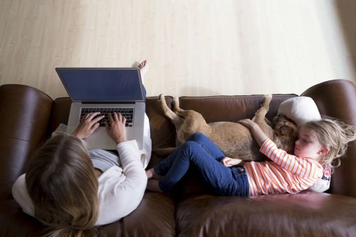 Dog with Family on Couch After Divorce